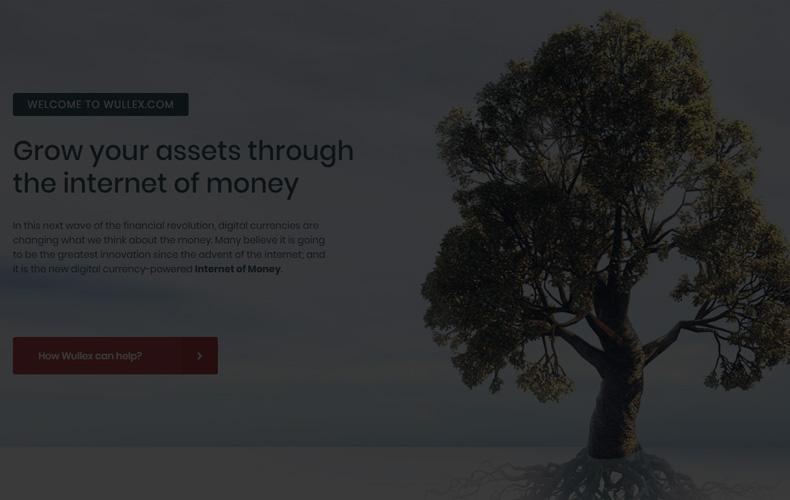 wullex-otzyvy-platit-proekt-ili-net