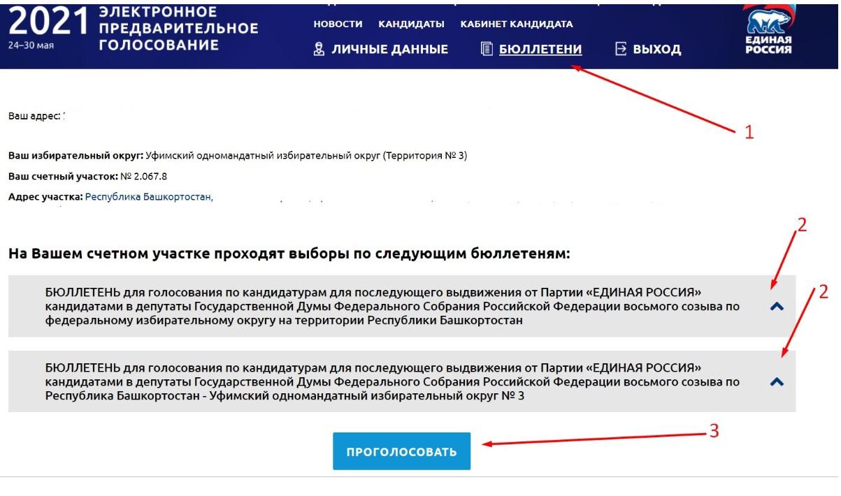 kak-golosovat-pg-er-ru