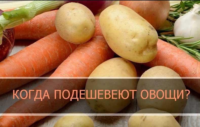kogda-podesheveyut-ovoshhi-2021